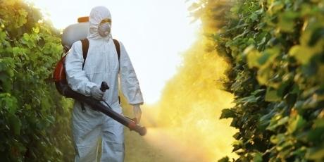 European Commission: Ban Glyphosate